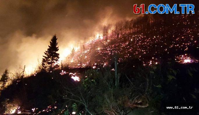 Trabzon'da yangın paniği 10 ilçede yangın çıktı!