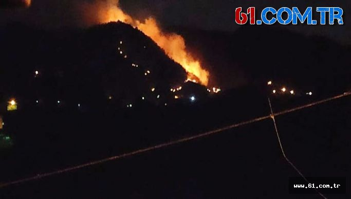 Son Dakika Araklı'nın bu Mahallesinde Korkutan Yangın