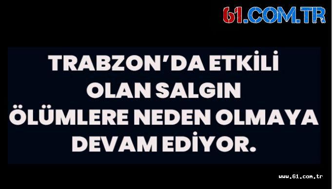 Trabzon'da Son Bir Haftada Koronavirüsten Ölenlerin Sayısı Belli Oldu