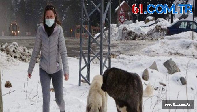 Bankadan Kredi Çekerek Sokak Hayvanlarını Besliyor!