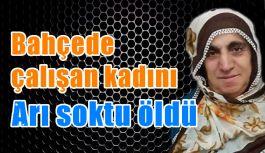 Araklı'da bahçede çalışan kadını arı soktu öldü