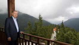 Cumhurbaşkanı Erdoğan, Foleya Mountain...